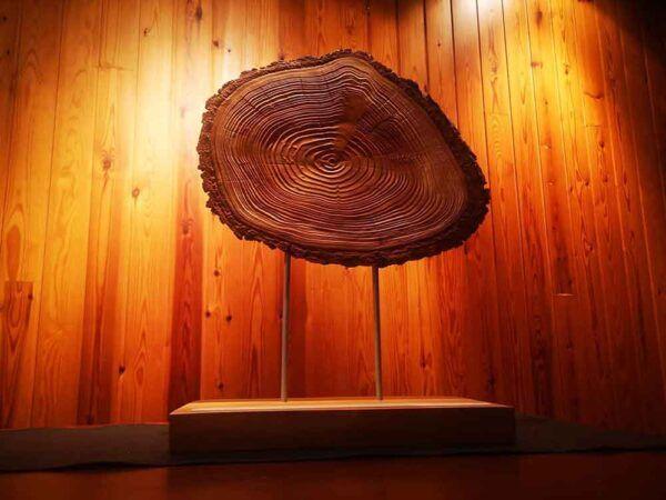 Lámpara de madera de sauce, ideal para decoracion