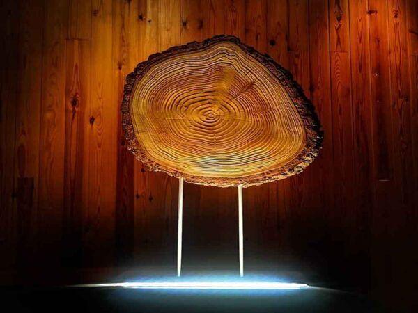 Lámpara de madera de sauce